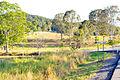Belli Park Sunshine Coast Queensland Australia (4).jpg