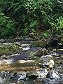 Bellingham, WA, USA - panoramio (7).jpg