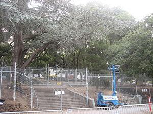 University of California, Berkeley oak grove controversy - Police fences surrounding the Berkeley Memorial Stadium oak grove.
