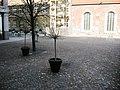 Berlin-Mitte Heiligegeistkirchplatz.jpg
