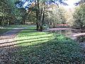Berliner Park 1.jpg