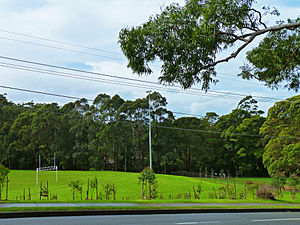 West Pymble, New South Wales - Bicentennial Park, Yanko Road