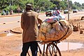 Bicycle Carry Everything in Africa.jpg