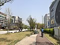 Bike path in Ansan Culture Plaza.jpg