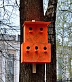 Bird house in Korolyov, Moscow Oblast (2).jpg