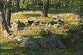 Björkö-Birka - KMB - 16000300020406.jpg