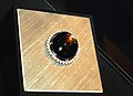 Black Star of Queensland Star Sapphire2.jpg
