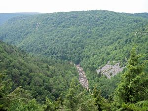 Blackwater River (West Virginia) - Image: Blackwater River Canyon West Virginia