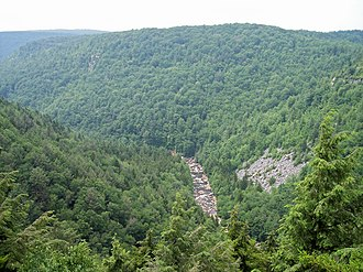 Blackwater River (West Virginia) - Image: Blackwater River Canyon West Virginia