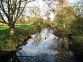 Blackwater River in Swallowfield (2) - geograph.org.uk - 1056003.jpg