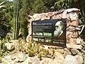 Blanes Ogrod Botaniczny Darwin.JPG