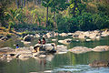 Bolaven Plateau Tad Lo ,Laos.jpg