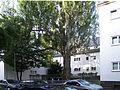 Bornheimer Hang Siedlung Florstaedter Strasse 19082010 01.JPG