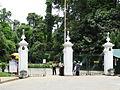 Botanical Garden of Peradeniya 92.JPG
