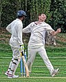 Botany Bay CC v Rosaneri CC at Botany Bay, Enfield, London 9.jpg