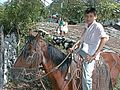 Boy on Horse San Ramon Choluteca Honduras.jpg