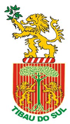 Official seal of Tibau do Sul