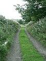 Bredisholm Track - geograph.org.uk - 1482930.jpg
