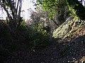 Bridleway at Wheatley - geograph.org.uk - 1703059.jpg