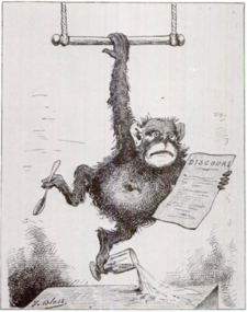 From Le Triboulet, February 1880. Caricature of Broca after he was named lifetime Senator.