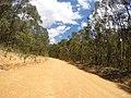 Brooman NSW 2538, Australia - panoramio (137).jpg