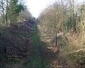 Brotheridge Green Railway Line Nature Reserve - geograph.org.uk - 685226.jpg