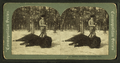 Buffalo hunting, Yellowstone Park, from Robert N. Dennis collection of stereoscopic views.png