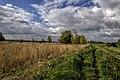 Buitendijk Zuidplaatje (14053288725).jpg