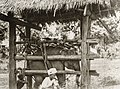 Burma091 (1).jpg