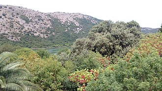 Lake Butrint - Forests of Butrint