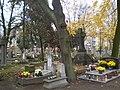 Bydgoszcz - Cmentarz Starofarny - panoramio (1).jpg