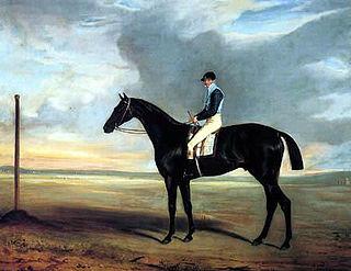 James Robinson (jockey) British jockey