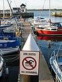 Caernarfon dock no swimming.jpg