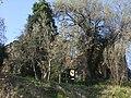 Calbi - panoramio.jpg