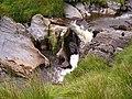 Camddwr Bleiddiad or Wolves' Gorge - geograph.org.uk - 701038.jpg