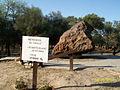 Campo del Cielo meteorite, El Chaco fragment, sign2.jpg