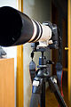 Canon EOS 6D + Canon EF 100-400mm F4.5-5.6L IS USM mounted on Manfrotto tripod.jpg