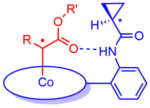 Carbene radical - Second Coordination Sphere Hydrogen-Bonding Effects in Controlling Carbene Radical Reactivity