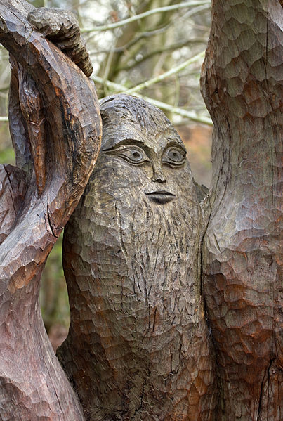 File:Carved Tree Seat Face (7006218169).jpg