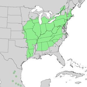 Carya ovata - Image: Carya ovata range map 1