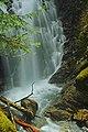 Cascade sur le ruisseau du Fouillet (Ariège).jpg