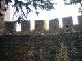 Castelo de Torres Novas (4).JPG