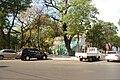 Catedral, Asuncion, Paraguay - panoramio (56).jpg