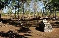 Cemitério do Batalhão - Monumento Nacional da Batalha do Jenipapo 03.jpg