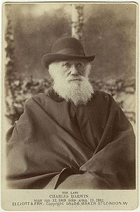 Charles Darwin photograph by Elliott and Fry, 29 November, 1881.jpg