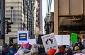Chicago Women's March (32085193650).jpg