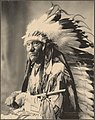 Chief Little Wound, Ogalalla Sioux.jpg