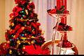 Christmas (5481889612).jpg