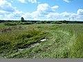 Chudovsky District, Novgorod Oblast, Russia - panoramio (3).jpg