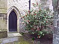 Church of St Mary and St Gabriel, South Harting - Door - geograph.org.uk - 357515.jpg